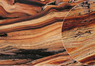 Teppichdruck Fototeppich Holzmaserung